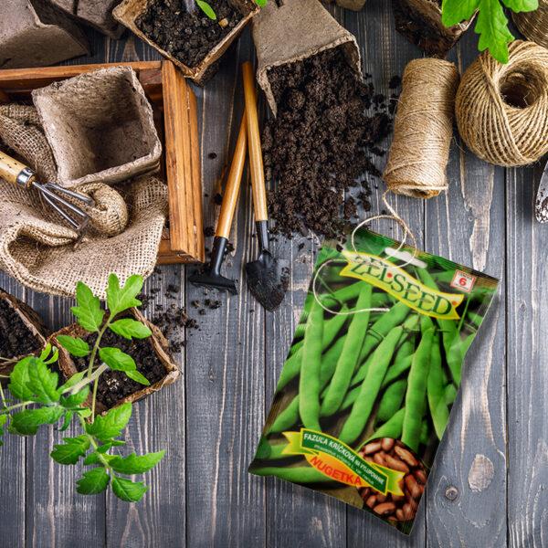 Zöldség vetőmag